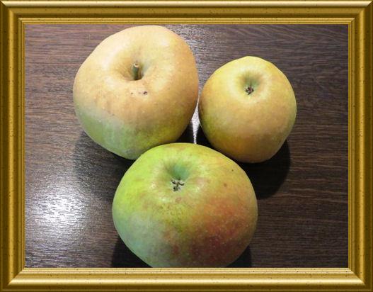 Äpfel aus der Taraland Lehrküche