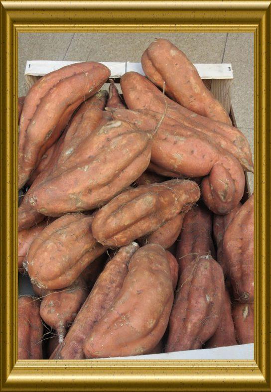Süsskartoffeln aus der Taraland Lehrküche