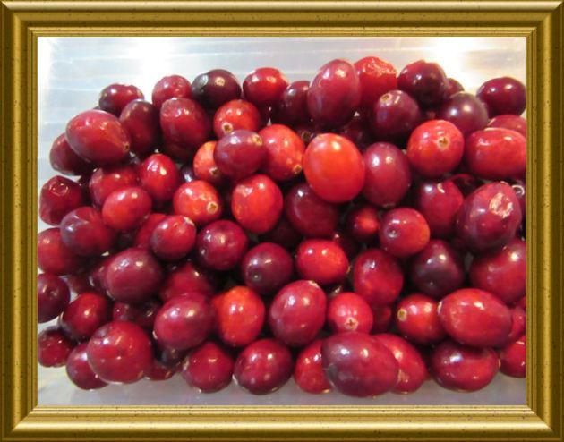 Cranberry aus der Taraland Lehrküche