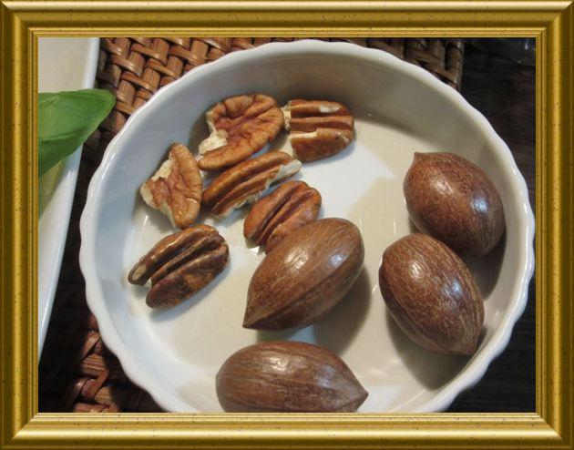 Pekannüsse aus der Taraland Lehrküche